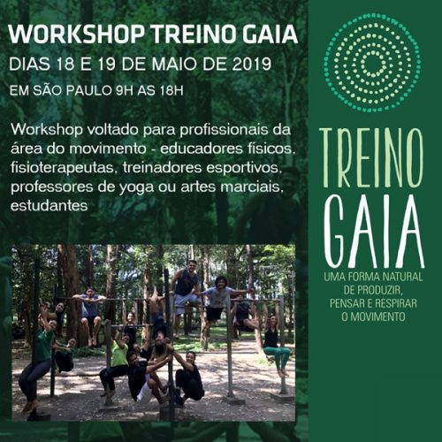 Workshop treino gaia 2019