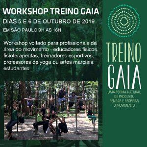 Workshop-treino-gaia-2019 copy